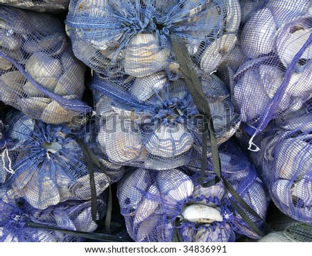 bags of fresh clams