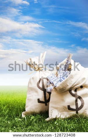 bags of money on a clear bright sky