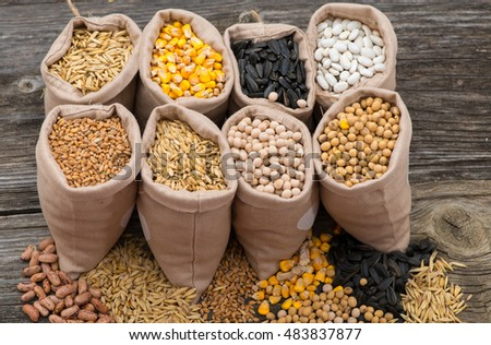 bags with cereal grains (oat, barley, wheat, corn, beans, peas, soy, sunflower) #483837877