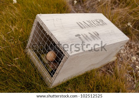 Baited small animal trap used for rat and stoat control with written warning for humans