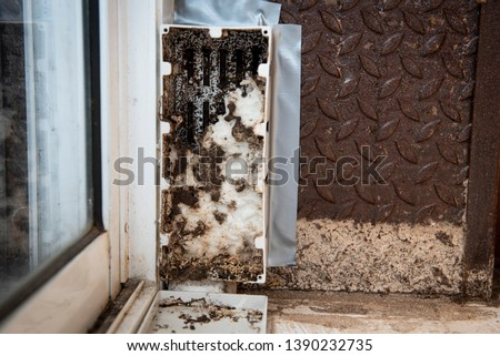 Baits stations are put on ground floor by enticing termites to feed on wooden stakes, cardboard, or some other cellulose-based material. The toxicant-laced bait can be substituted.get rid of termites #1390232735