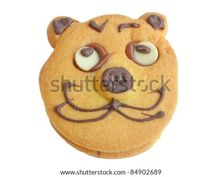 Baked cookie with cat face isolated on white