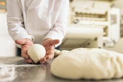 Baker kneading dough in a bakery. Bakery Concept.