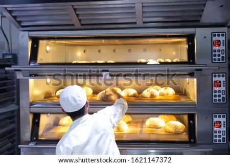 Baker putting baked artisan bread