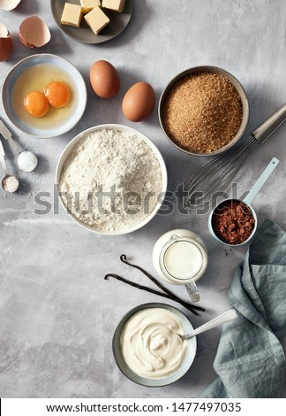 Baking ingredients: flour, eggs, sugar, butter, milk and spices on gray marble background. Top view.