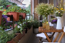 Balcony seating for relaxation. Table with homemade lemonade, bunches of herbs and wild flowers.