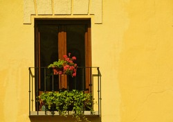 Balcony with wooden window decorated with pots of green plants and red flowers
