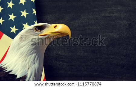 Bald Eagle and American flag with copy space. #1115770874