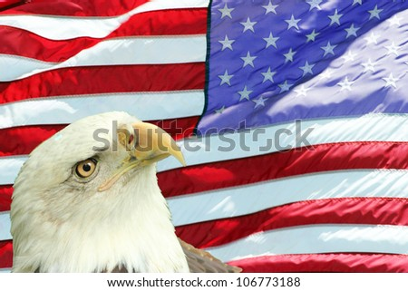 Bald Eagle set against the red, white and blue American flag