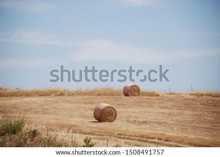 Bales of fodder for livestock #1508491757