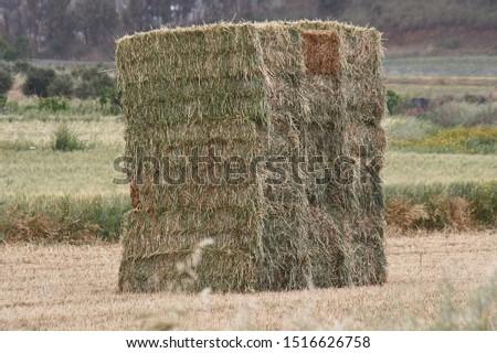 Bales of fodder for livestock #1516626758