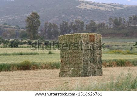 Bales of fodder for livestock #1516626761