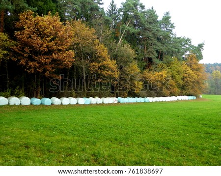 bales of hay at the edge of a colored autum forest to dry in Germany