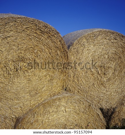Bales of Hay close up towards blue sky