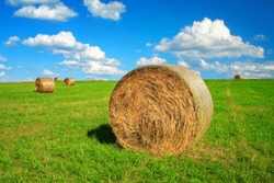 Bales of Hay in Green Field under Blue Sky with Clouds