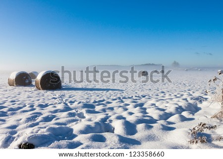 Bales of hay laying in snow on farm winter field