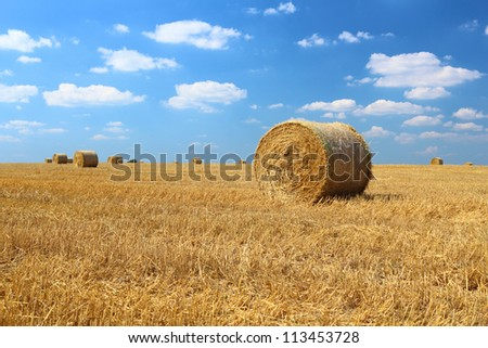 Bales of hay on the field with blue sky and small clouds above