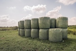 Bales of hay packed with green plastic film stacked on the edge of grassland in a Dutch nature reserve. It is a sunny summer day with some clouds in the sky.