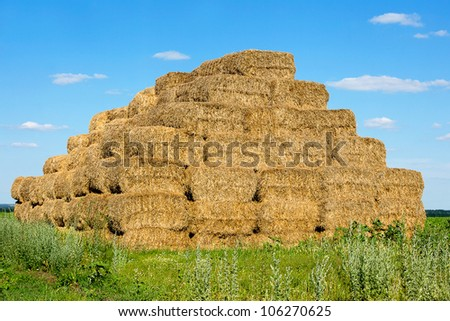 Bales of straw collected in a heap in a field