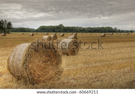Bales of straw (HDR) 02
