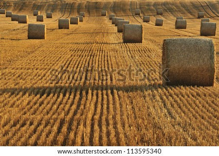 Bales of straw in a field after harvest. Taken at sunset. Space for text lower left.