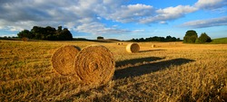 Bales of Straw in Stubble Field during Harvest, Warm Light of the Setting Sun, Blue Sky with Clouds
