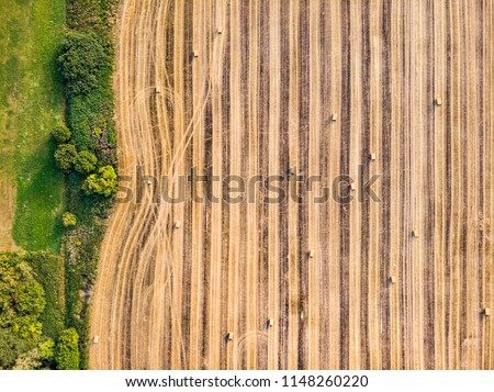 Bales of straw on harvest fields in Czech Republic, field line, aerial photography