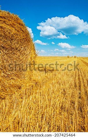 bales of straw on harvested wheat field