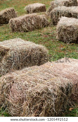 Bales or bales of dry hay ready for transport. #1205492512