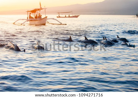 Stock Photo Bali Indonesia free Dolphin boat Watching at Lovina Beach