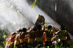 Bali's Kecak dance in nature symbolizes harmony
