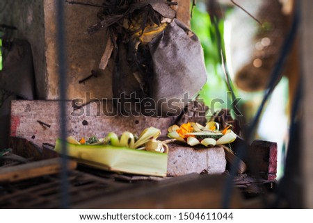 Balinese Hindus way of offering sacred offerings, Indonesia ritual for hindu