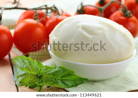 ball of mozzarella cheese with basil and tomatoes