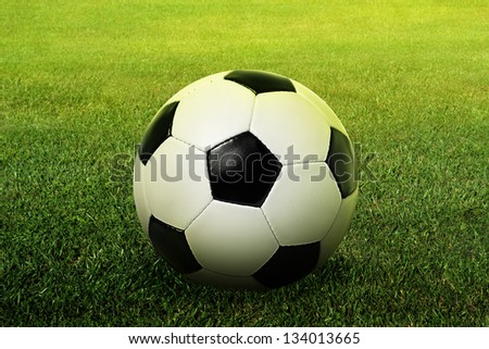 ball on the ground