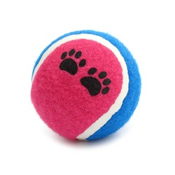Ball tennis toy for dogs