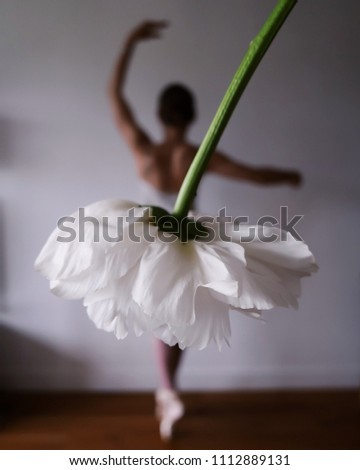 ballerina forced perspective
