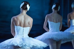 Ballet swan lake. Backs of ballerinas close up,statement. Ballerinas in the movement.