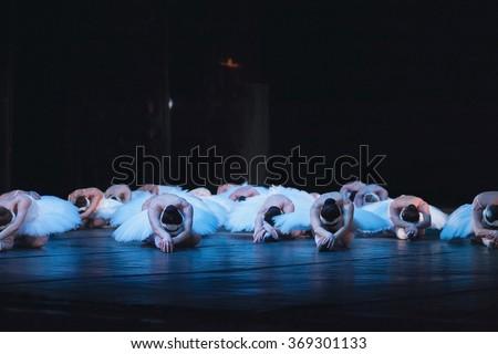 ballet swan lake. ballet statement. ballerinas in the movement.