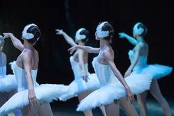 Ballet swan lake. statement. Ballerinas in the movement.
