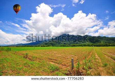 Balloon with blue sky over the green field