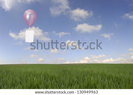 balloon with message card floating over meadow