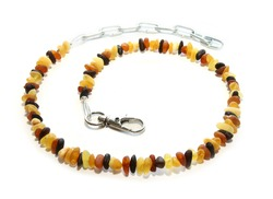 Baltic amber necklace/collar for pets. Isolated on white background