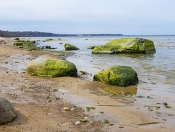 Baltic coastline under a partly cloudy sky, beautiful. Baltic Sea, rocks, landscape. close up. Green algae, Chlorophyta, floating on sea shore rocks.