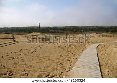 Baltic dune