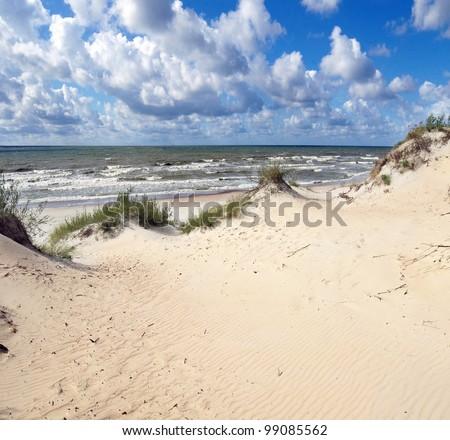 baltic dunes
