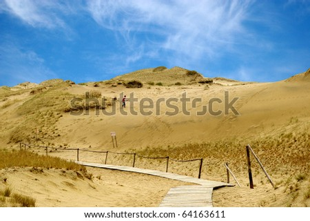 Baltic dunes.The Curonian Spit.Unesco heritage