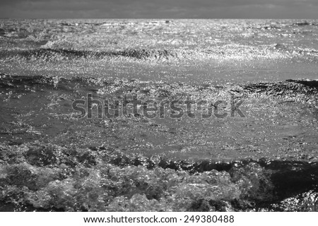 Baltic Sea. Black and white.