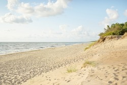 Baltic sea coast (sand dunes) at sunset. Clear blue sky. Soft sunlight. Pure nature, environmental conservation, ecology, ecotourism, hiking, vacations, recreation. Panoramic view