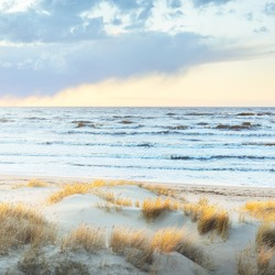 Baltic sea shore (desert, beach) under blue sky with glowing sunset clouds. Sand dunes and plants (dune grass, Ammophila). Denmark. Nature, environment, ecotourism. Picturesque scenery. Aerial view