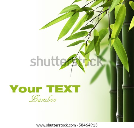 Bamboo background with copy space #58464913